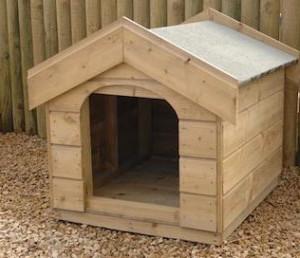 Dog Kennels Business For Sale Ireland
